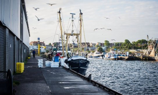 Commercial .IJmuiden citymarketing Velsen
