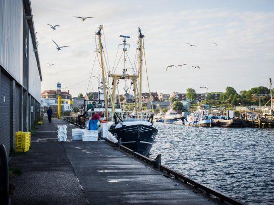 Commercial .IJmuiden citymarketing Velsen
